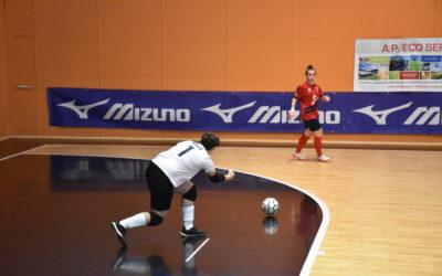 A2 femminile, doppia trasferta contro Duomo Chieri e VIP Altamarca