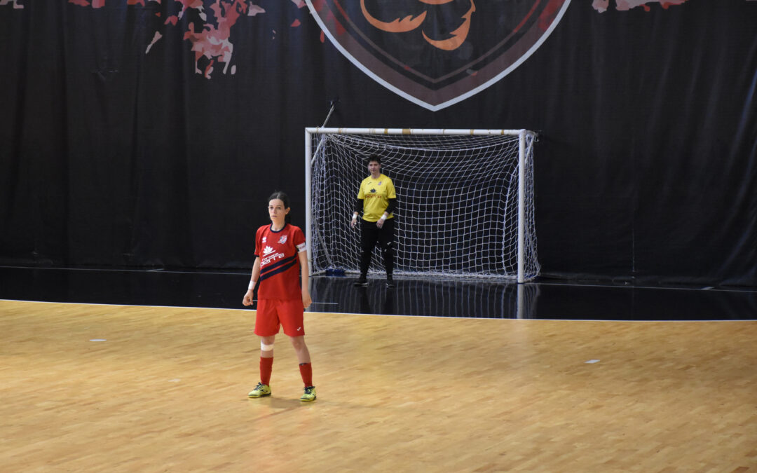 A2 femminile, contro Padova per puntare ai playoff